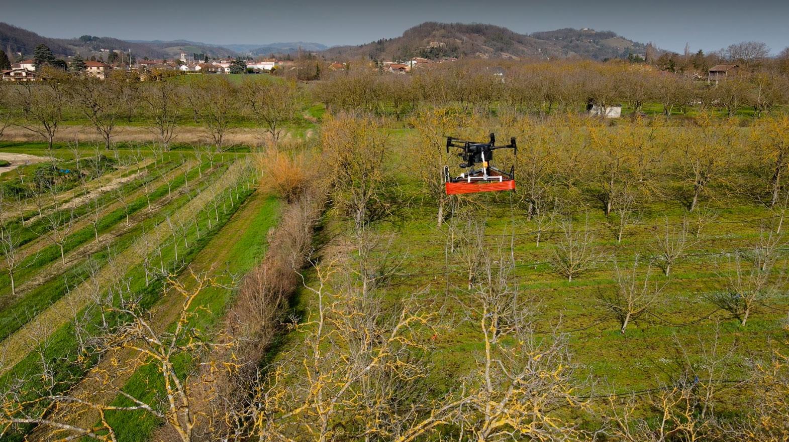 Pherodrone in action