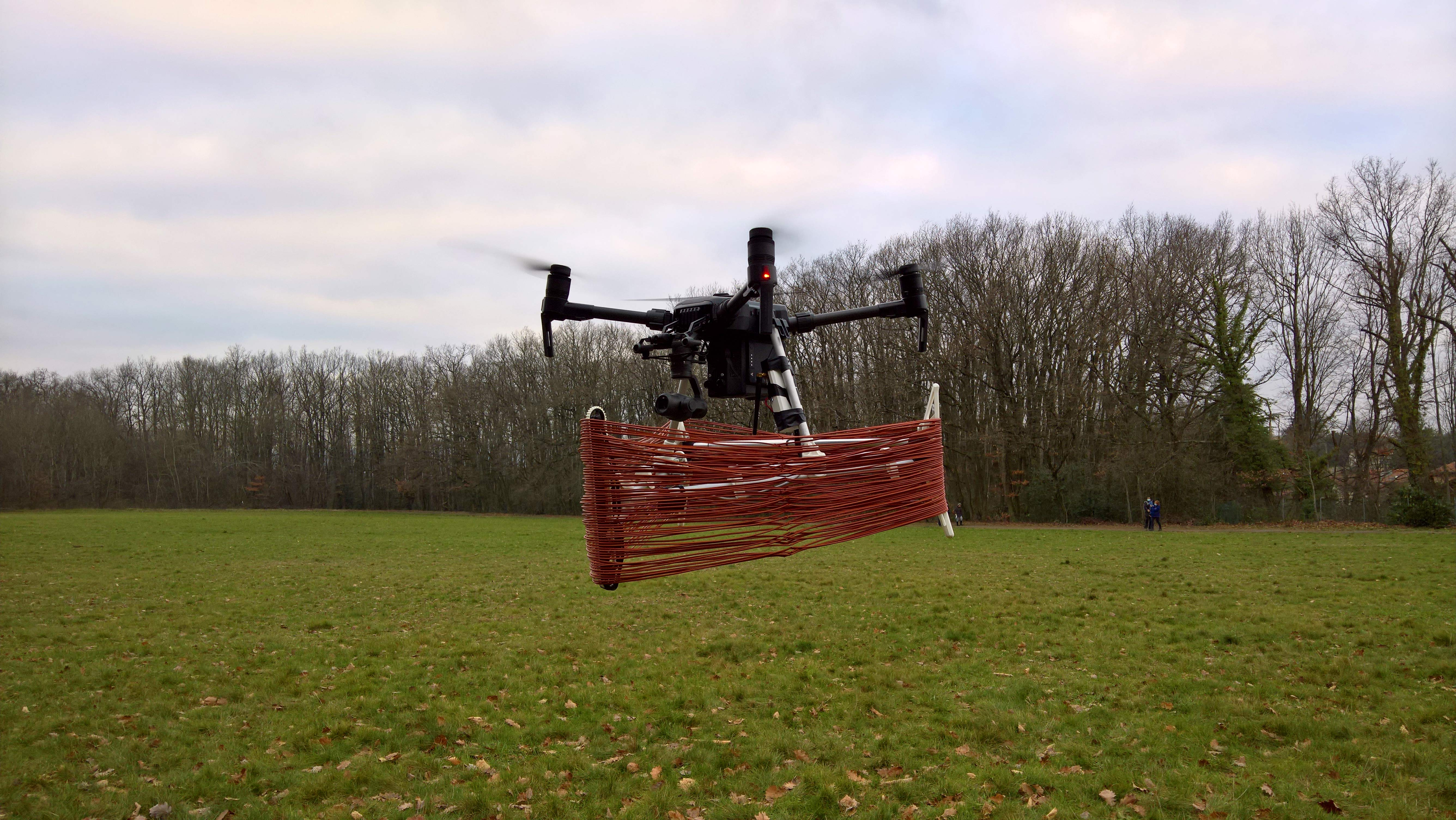 Pherodrone carrying rings